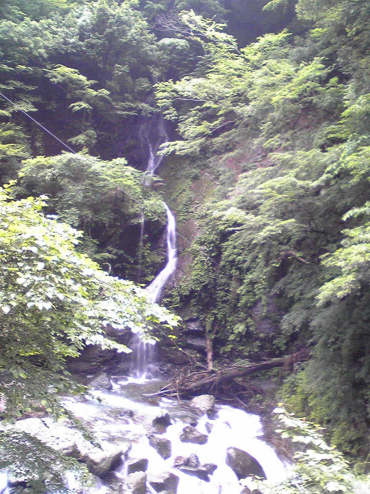2011.06.19 早戸川林道 034.jpg