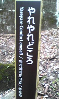 2011。05.03寸又峡 (73).jpg