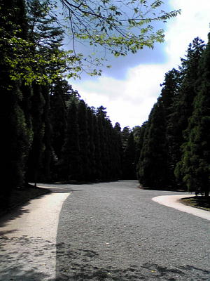 多摩御陵.JPG
