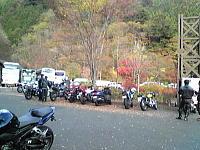 都民の森.JPG