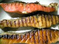 鮭3種.JPG