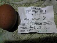a足柄の卵.JPG